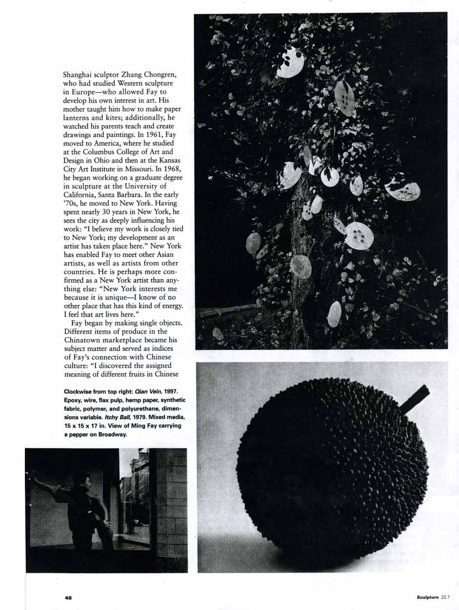 A Decorative Reading of Nature: Ming Fay, article, pg 2