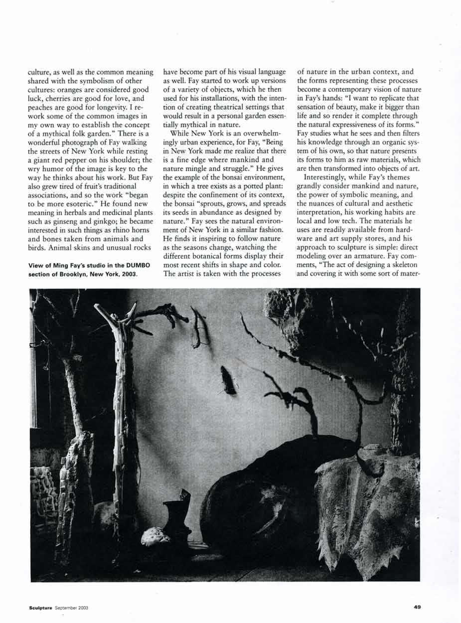 A Decorative Reading of Nature: Ming Fay, article, pg 3