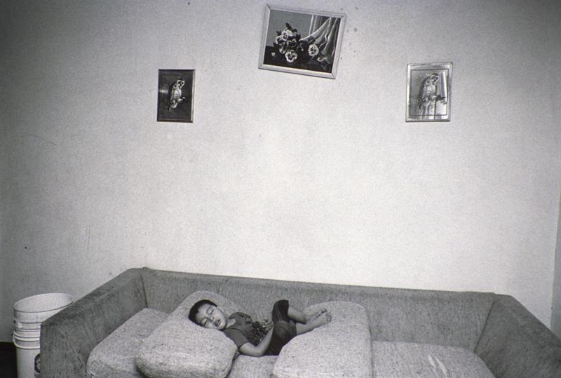 Boy Sleeping On Couch