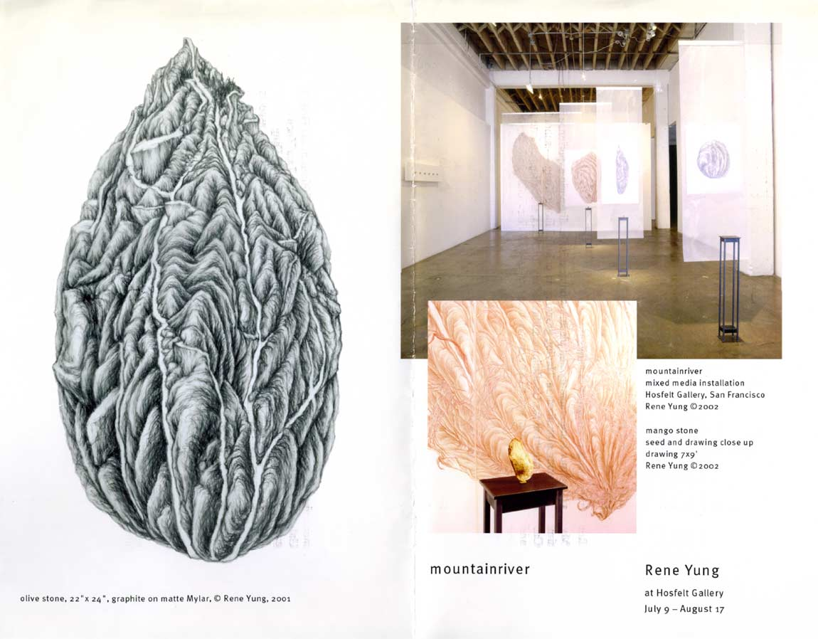 Rene Yung: mountainriver, flyer