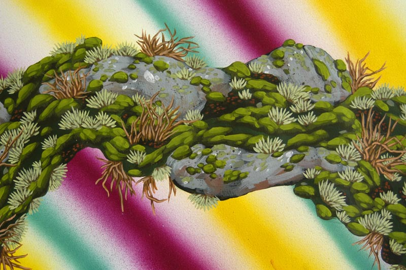 Mossbow Detail