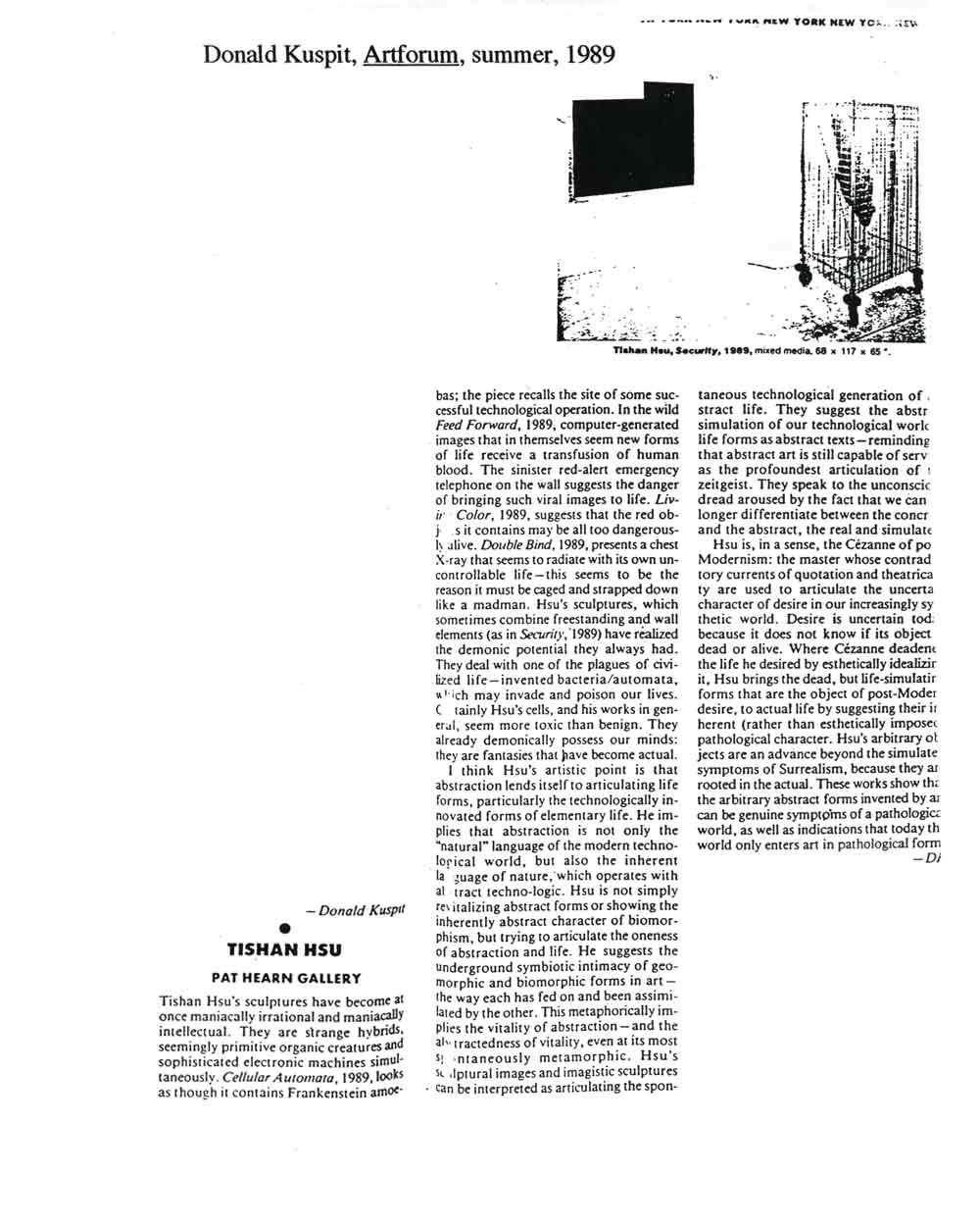 Tishan Hsu: Pat Hearn Gallery, article